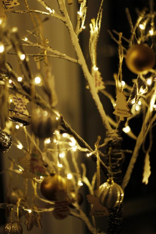 Helen_Jason_Christmas-Wedding_SBS_036