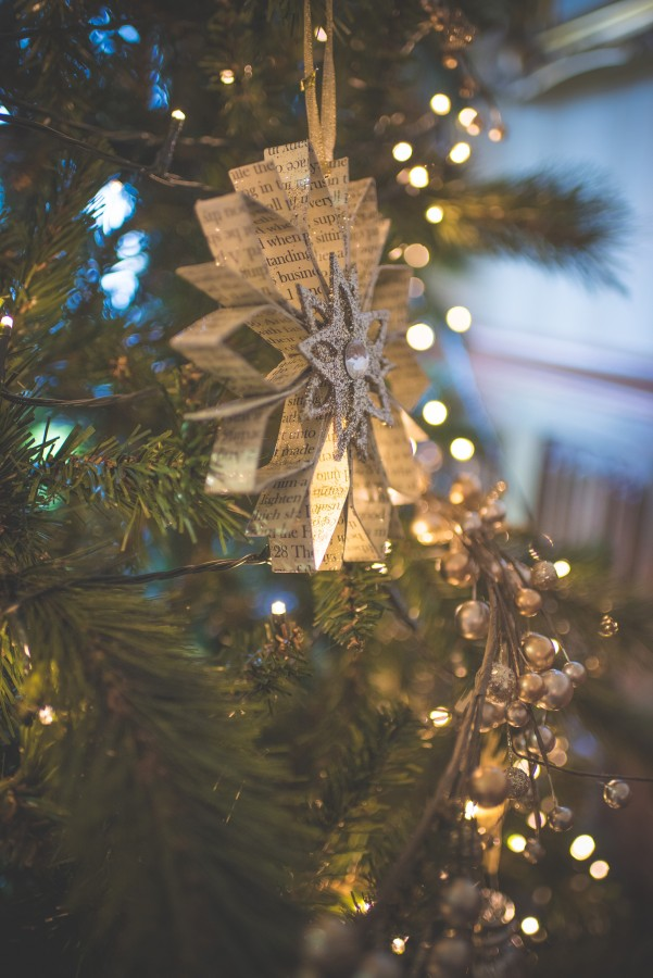 Jamine-James_Caroline-Smyth-Photography_Christmas-Wedding_003