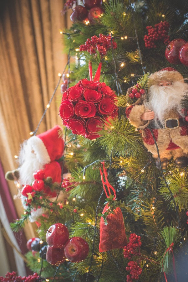 Jamine-James_Caroline-Smyth-Photography_Christmas-Wedding_009